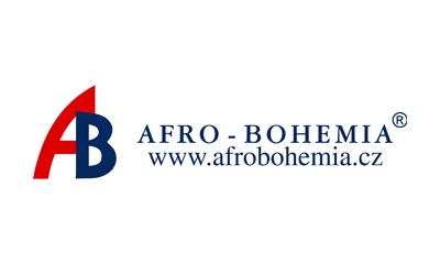 Afro Bohemia
